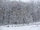 Zima to piękna pora roku...