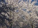 zimowe zdjecie 7
