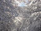 zimowe zdjecie 10
