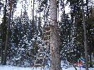 leśny domek:)