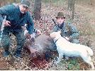 Kolega Jarek Piechota pomaga mi przy strzelonym odyńcu 14.01.2007 w obwodzie nr. 5 K.Ł. ORZEŁ w Częstochowie