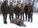 polowanie las bańkowszczyzna