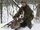 Moj najwiekszy byk jelenia Wirgilijskiego strzelony z luku.