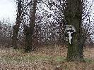 biały krzyż