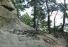 podkarpackie, rezerwat Prządki k. Krosna