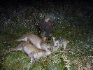 Mój pierwszy dublet jelenia